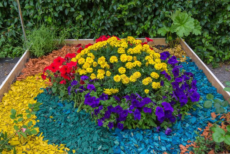 Bedflowers immagine stock libera da diritti