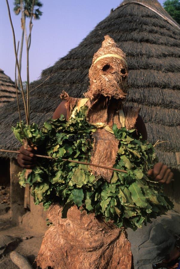 bediks Σενεγάλη στοκ φωτογραφία