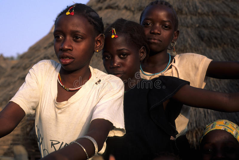 bediks Σενεγάλη στοκ φωτογραφίες