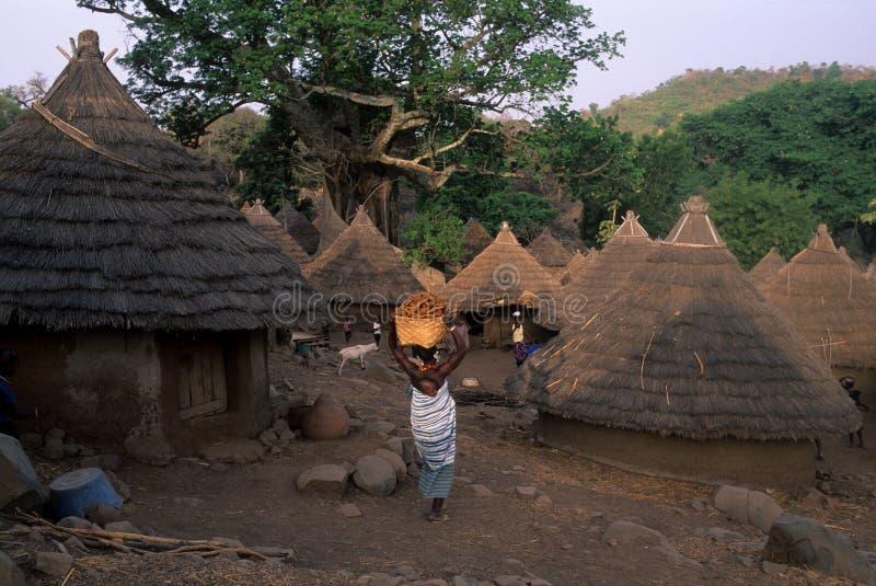 bediks Сенегал стоковая фотография