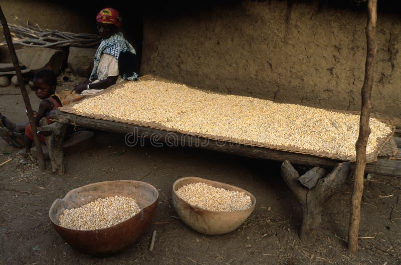 Bediks - le Sénégal image stock