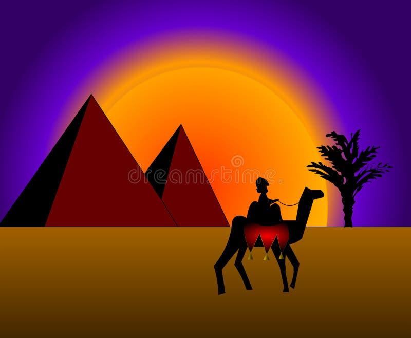 Bedouin on camel vector illustration