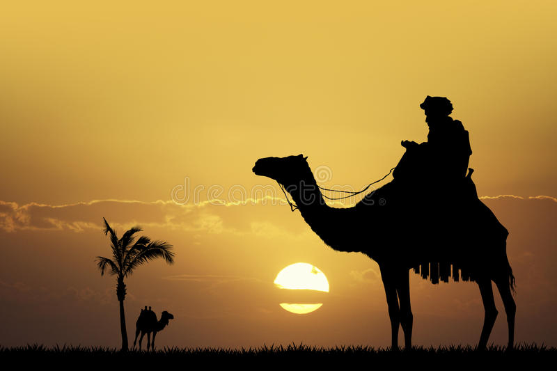 Bedouin on camel at sunset. Illustration of bedouin on camel at sunset vector illustration