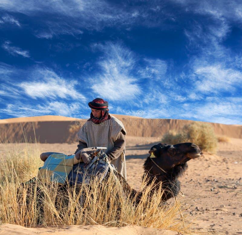 Bedouin com camelo fotos de stock royalty free