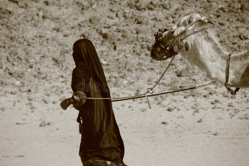 Download Bedouin woman with camel stock image. Image of outfit - 20054201