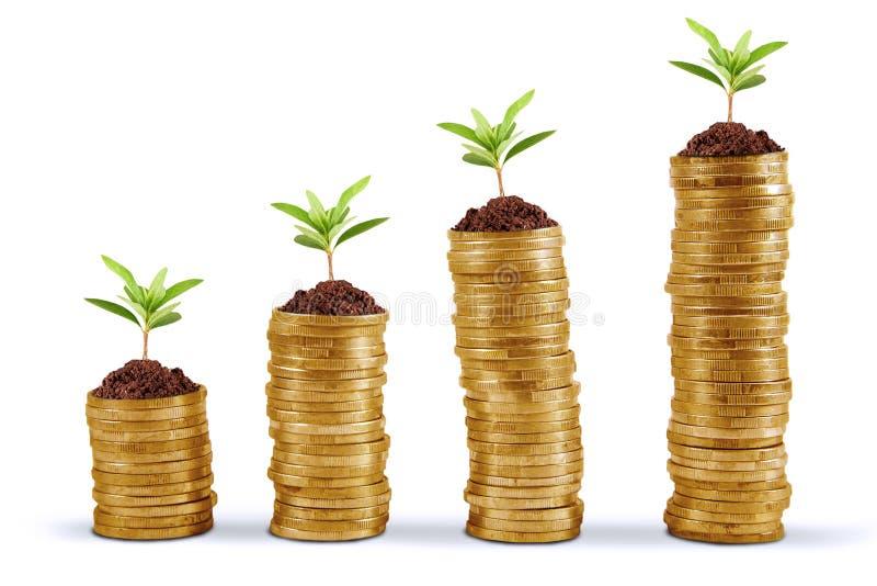 Bedrijfs de groeiconcept royalty-vrije stock afbeelding