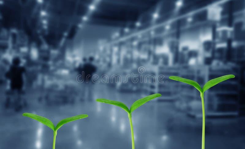 Bedrijfs de groeiconcept stock foto