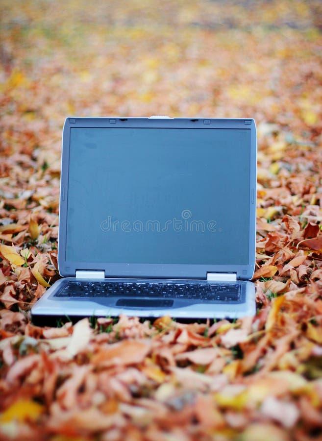 Bedrijfs laptop stock afbeeldingen