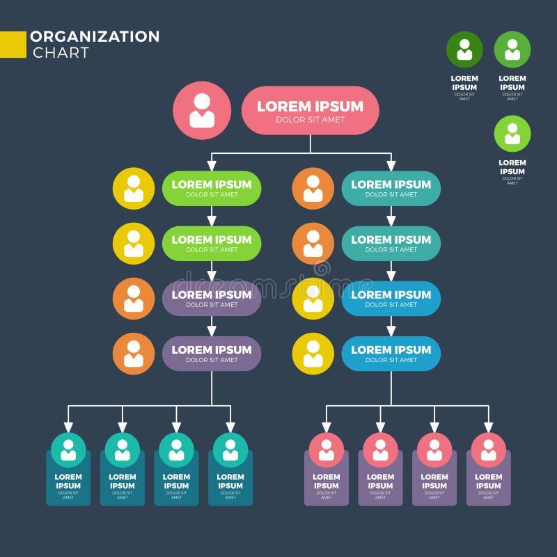 Bedrijfs organisatorische structuur Vectorhiërarchiegrafiek vector illustratie