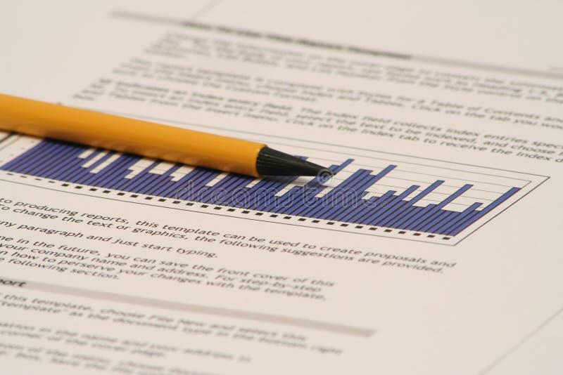 Bedrijfs Rapport royalty-vrije stock foto's