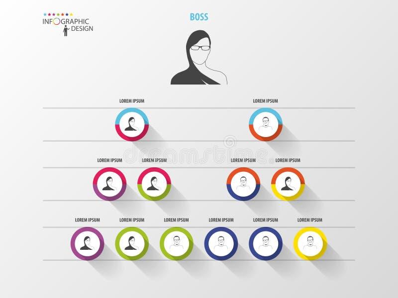 Bedrijfs structuur Organigram Het ontwerp van Infographic royalty-vrije illustratie