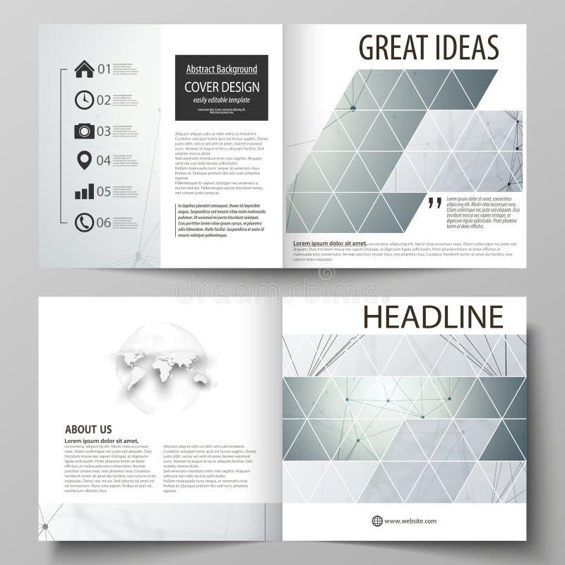 Bedrijfsmalplaatjes voor vierkante de vouwenbrochure van ontwerpbi, vlieger Pamfletdekking, vectorlay-out Genetisch en chemisch vector illustratie