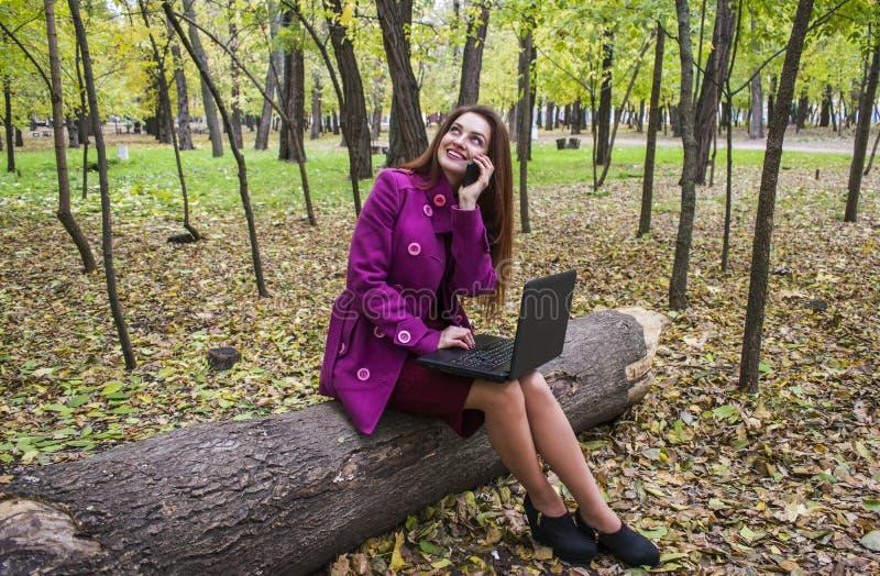 Bedrijfsvrouw die met laptop en telefoon in de herfstpark werken De vrouw heeft rood haar en grote groene ogen stock afbeelding
