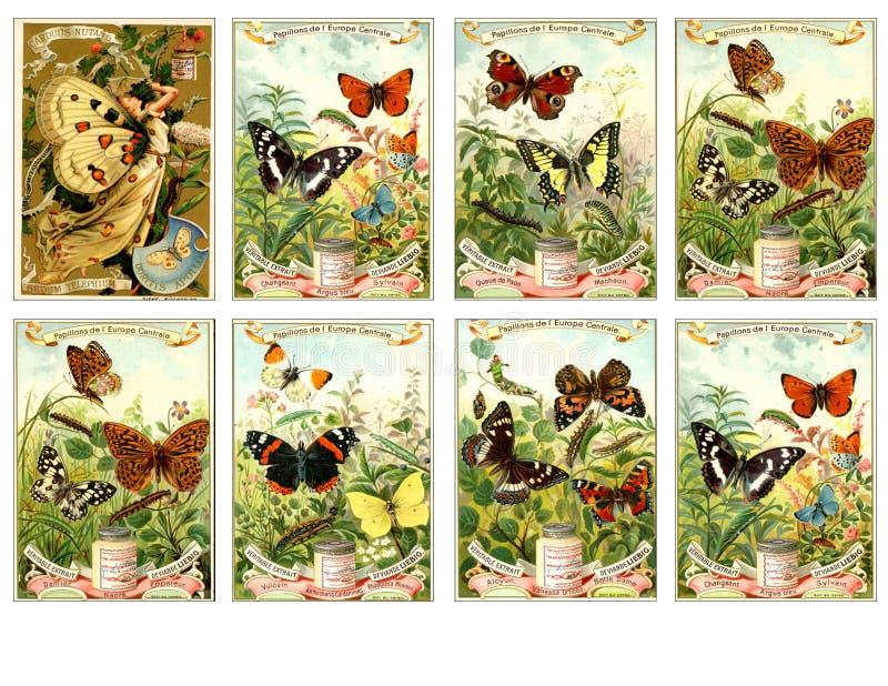 Bedruckbares Tag-Blatt - Weinlese-Werbungs-Eintagsfliegen-Trading Cards lizenzfreie abbildung