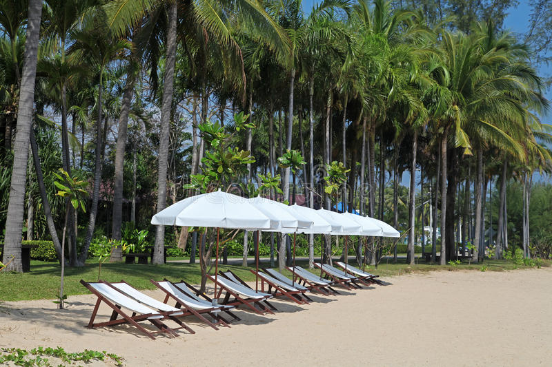 Beds on the paradise beach royalty free stock photography
