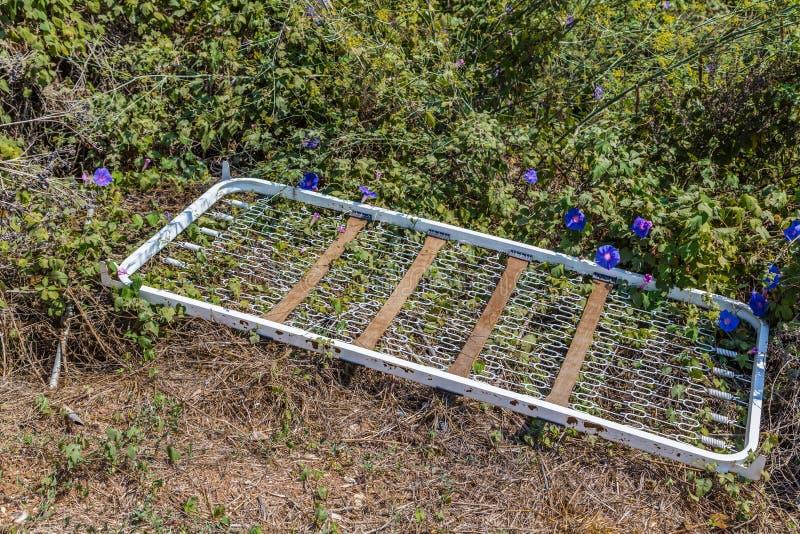 bedspring που αφήνεται στη μέση των ζιζανίων στοκ φωτογραφία