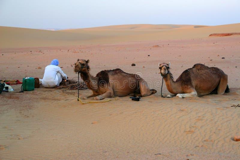 Beduíno árabe nativo que faz um jantar no meio do deserto em Egito fotografia de stock royalty free