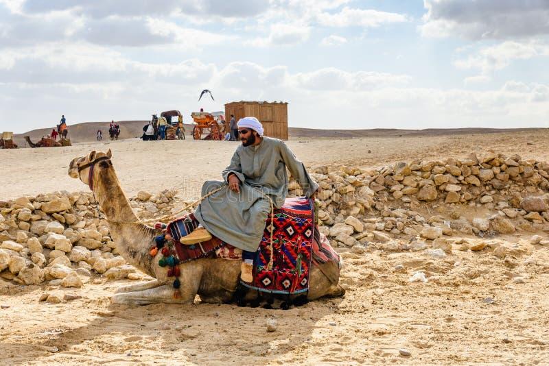 Beduíno novo que monta um camelo no platô de Giza Cidade do Cairo e rio Nile imagens de stock royalty free