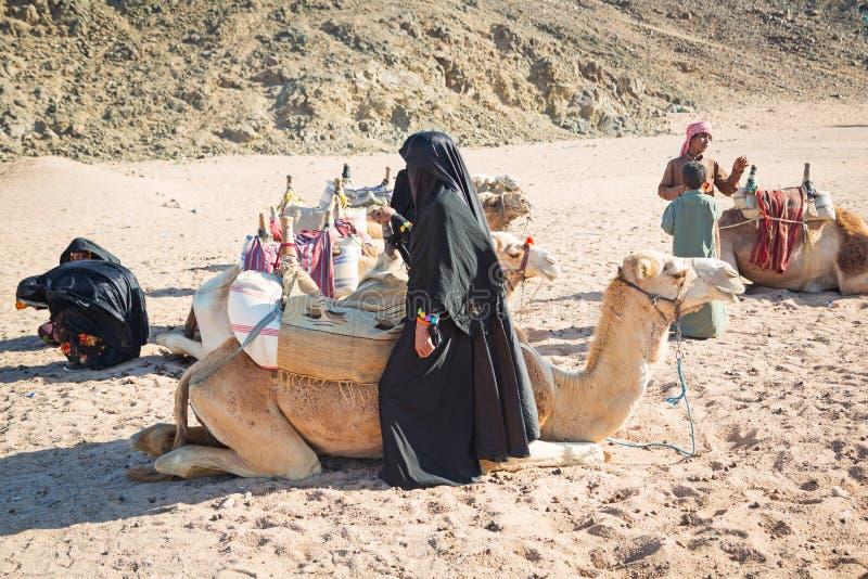 Beduińscy ludzie z wielbłądami odpoczywa na pustyni w Egipt fotografia royalty free