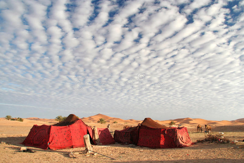 Beduin tents in the desert royalty free stock images