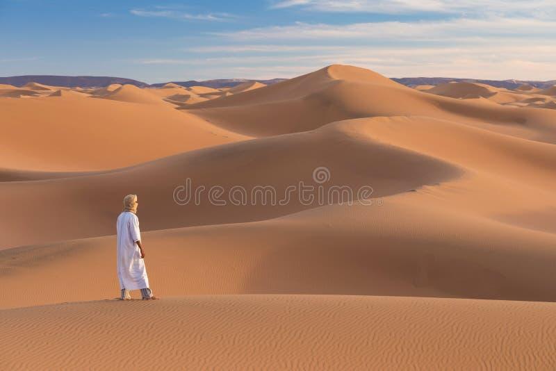 Beduin w drodze przez piaszczystą pustynię Piękny zachód słońca z dużymi wydmami na Saharze, Maroko Koczownik z sylwetki obrazy royalty free