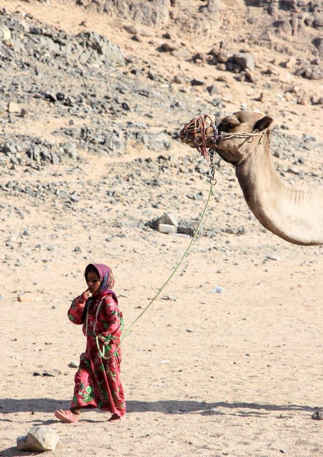 Beduinflickan i nationell klänning som går med en kamel i öknen royaltyfri foto