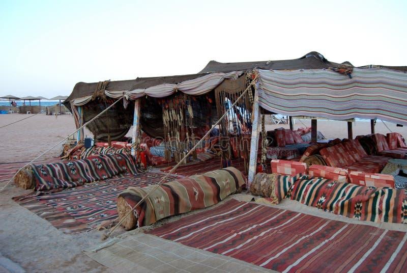 Beduinkafé, Egypten royaltyfria bilder