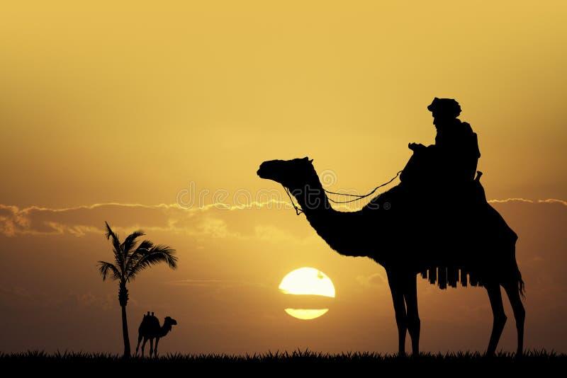 Beduino en camello en la puesta del sol ilustración del vector