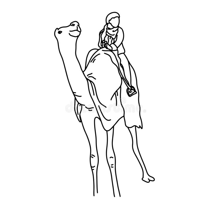 Beduino o turístico en una mano del garabato del bosquejo del ejemplo del vector del camello dibujada con las líneas negras aisla stock de ilustración