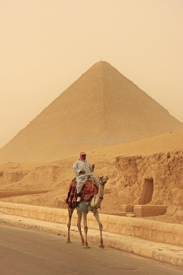 Beduinridningkamel nära den stora pyramiden av Khufu i en sandstorm royaltyfria bilder