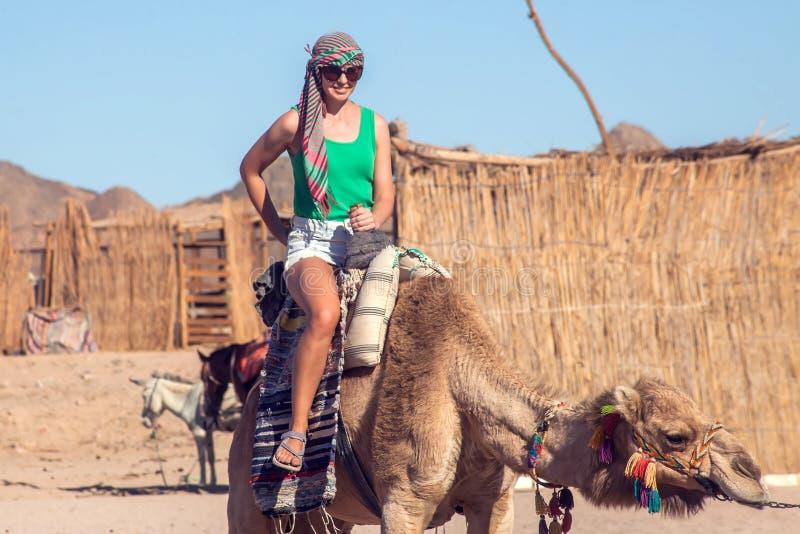 Beduins och tourits rider kamel i öknen royaltyfria foton
