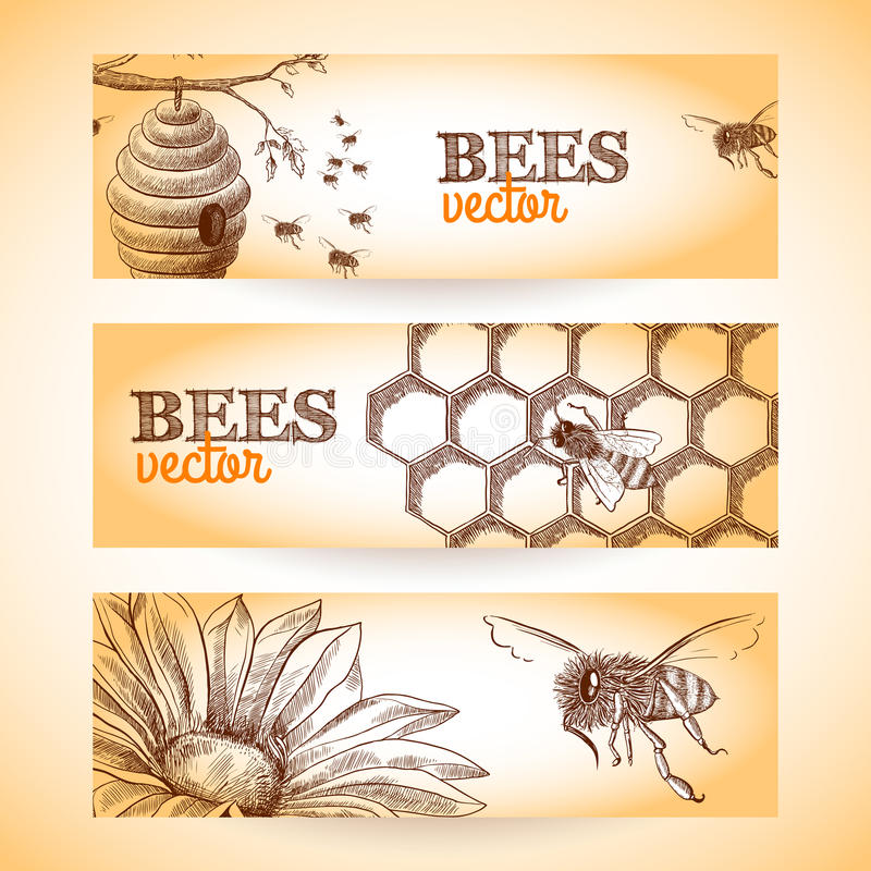 Free Bee Banner Sketch Stock Photo - 40586110