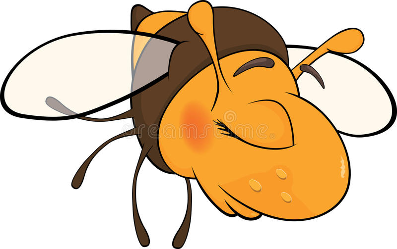 Download Bee blindly stock vector. Image of parasitic, pest, pollinate - 29081730