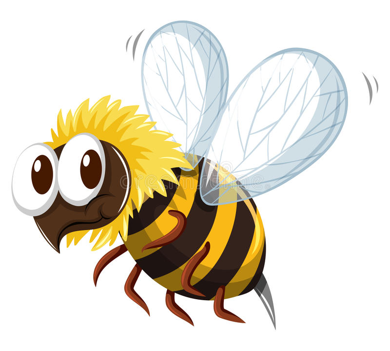 Bee flying on white background vector illustration