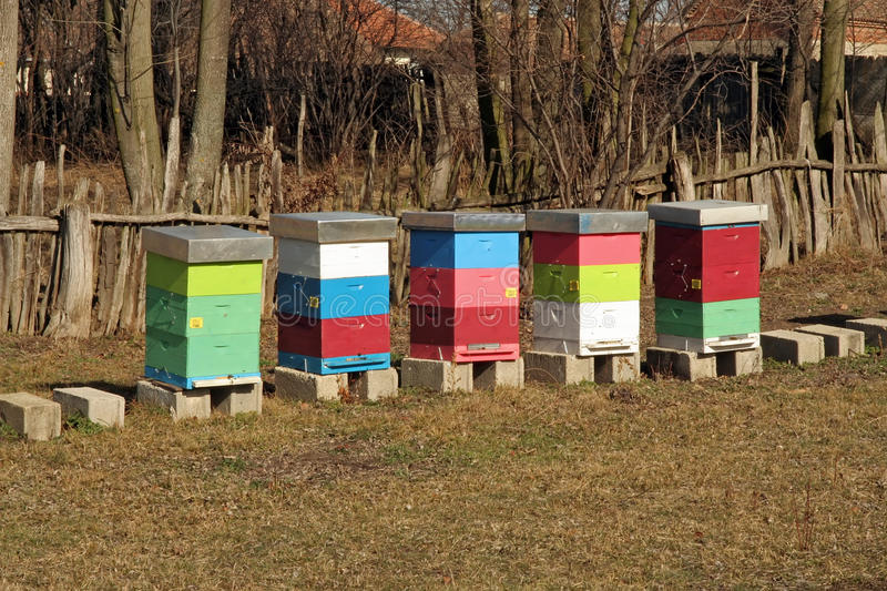 Download Bee Hive stock image. Image of color, colorful, colony - 38075799