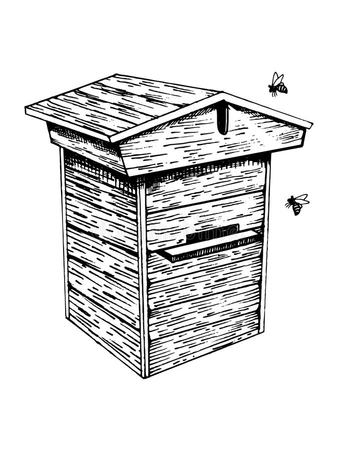 Bee hive and bees engraving vector illustration. Scratch board style imitation. Hand drawn image stock illustration