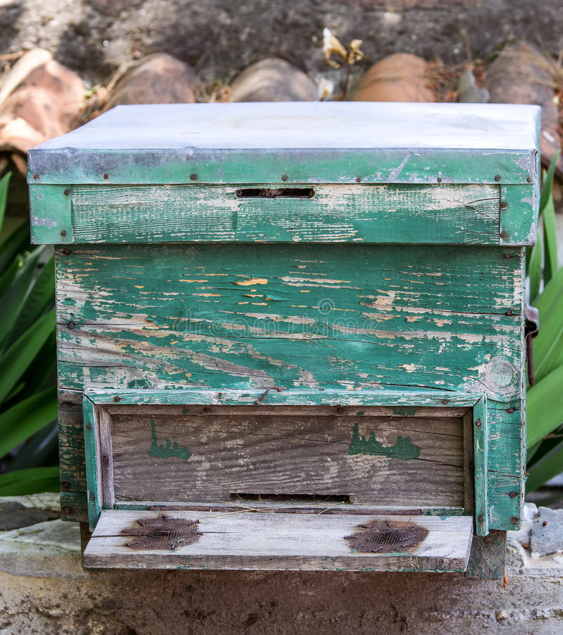 Bee Hive. A green colored bee hive situated on a piece of stone royalty free stock images