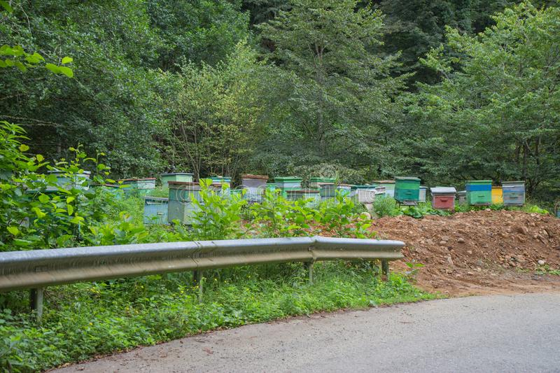 The wooden colorful boxes are painted bright colors. Wooden multi-colored beehives for bees. Bee hive in the summer landscape. The wooden colorful boxes are stock photos
