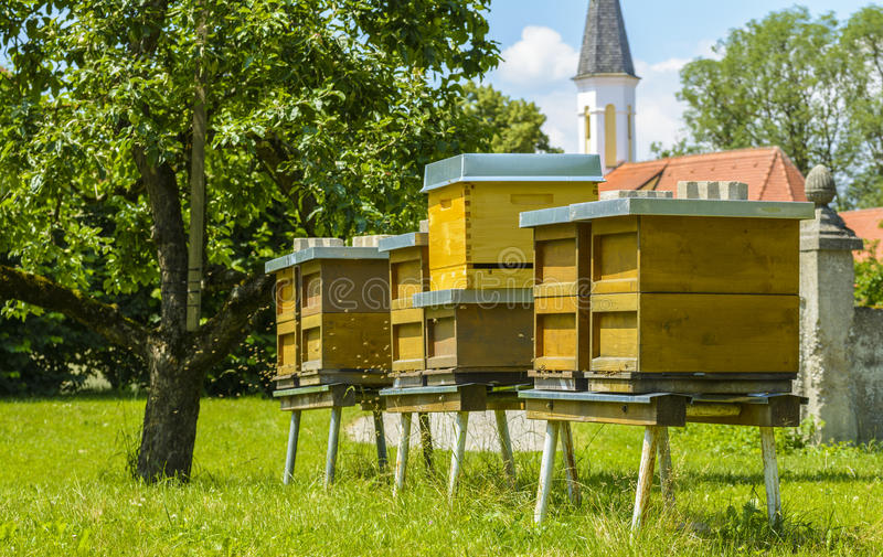 Bee hives in the garden stock photography