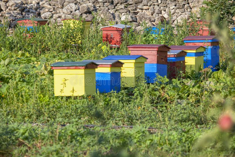 Bee hives. In the garden royalty free stock images