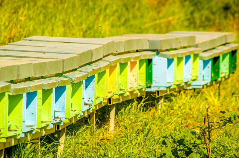 Bee Hives. A collection of colourful bee hives, active with bees collecting honey, in the outbacks of Sicily, Italy stock images