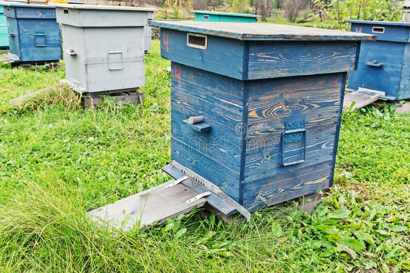 Bee hives in the field. Agricultural landscape - Bee hives in the field stock photography