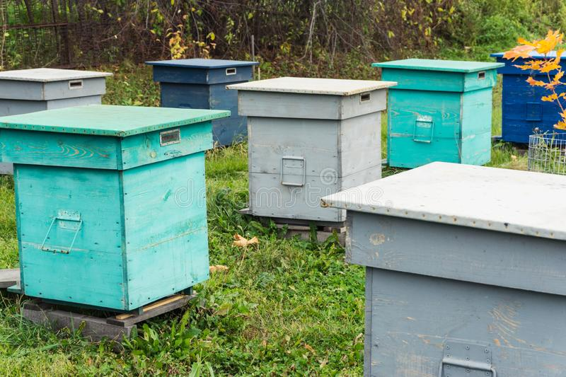 Bee hives in the field. Agricultural landscape - Bee hives in the field royalty free stock photos