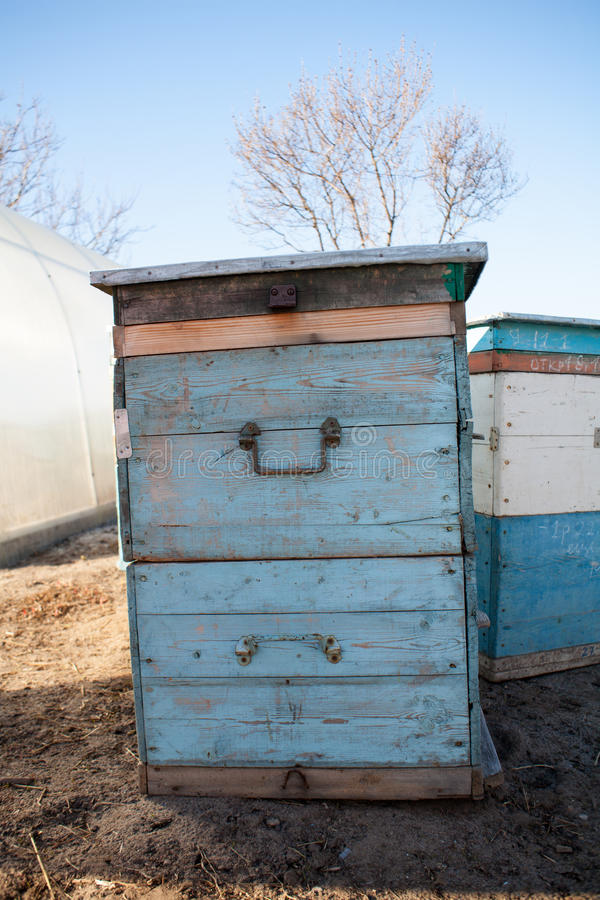 Bee hives on lavender and popular destination and place for tourists for making vacations in summer. royalty free stock images