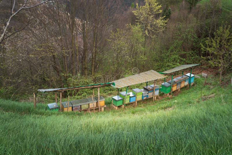 Bee hives on meadow in Italy. Bee hives on meadow in countryside of Italy,BergamoSeriana valley}The houses of the bees are placed on the green grass in the stock images