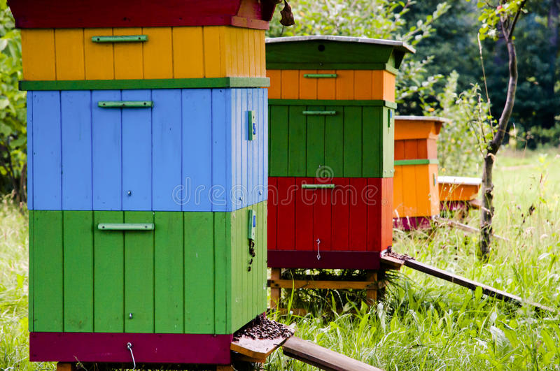 Bee Hives - Poland. Colorful Bee Hives in Poland royalty free stock photography
