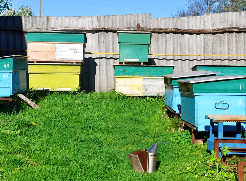 Bee hives standing in an apiary on green grass royalty free stock images