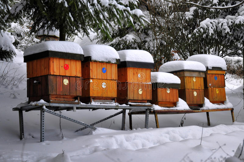 Bee hives in winter stock photos