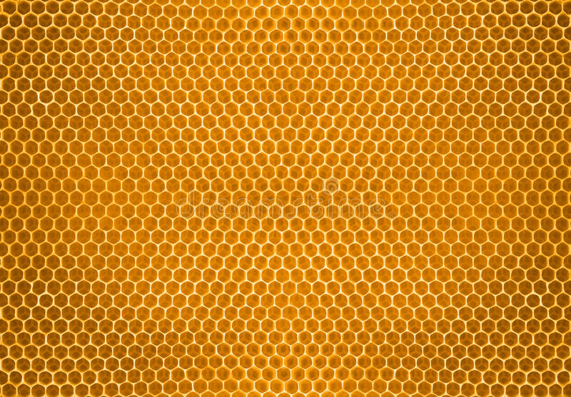 Bee honey in honeycomb pattern background stock images