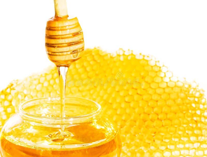 Bee honeycomb stock photography
